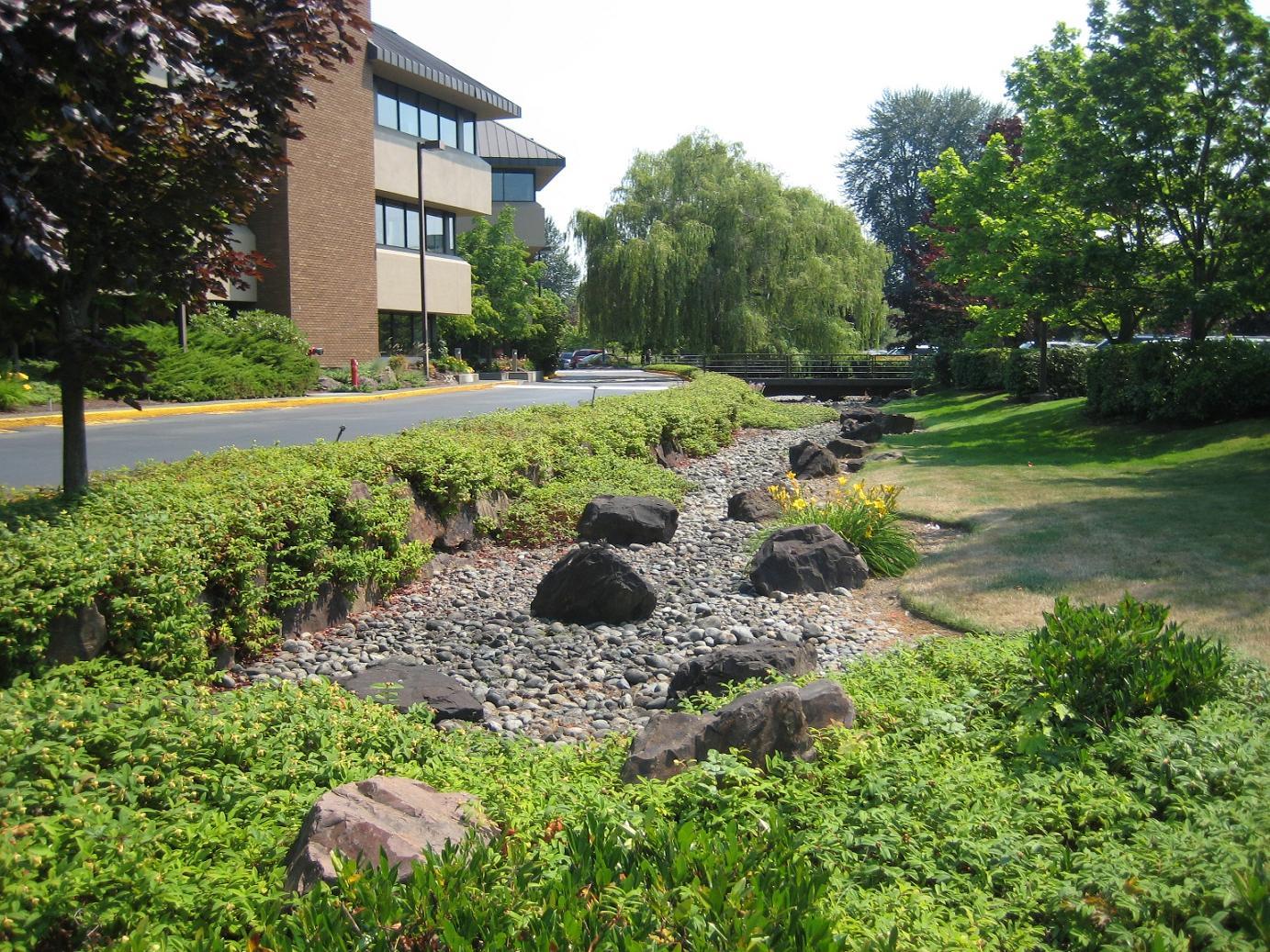 Pretty Bioswales Pinehurst Seattle